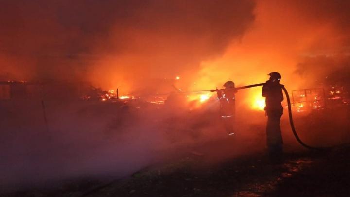 «Полжизни этой ферме отдали»: в крае за полчаса сгорело подворье с десятками животных