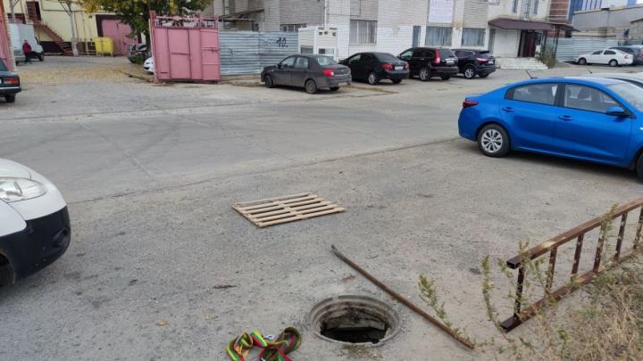 «Люк не наш, спасайте как хотите»: в Волгограде отказались вытаскивать собаку, провалившуюся в колодец