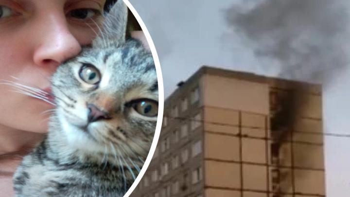 «Жутко кашлял и упал на колени»: пожарный бросился в задымленный дом, чтобы спасти котенка