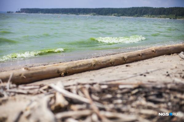 Подозреваемый напал на девочку на территории пляжа «Дюны» в Бердске