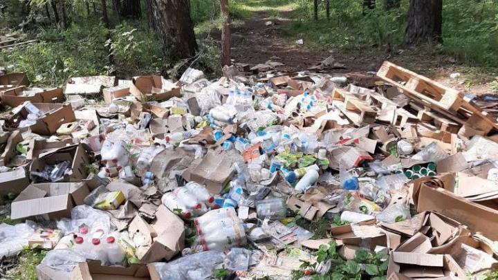 Гора из бутылок молока, «Агуши» и сметаны: неизвестные выбросили продукты посреди леса в Екатеринбурге