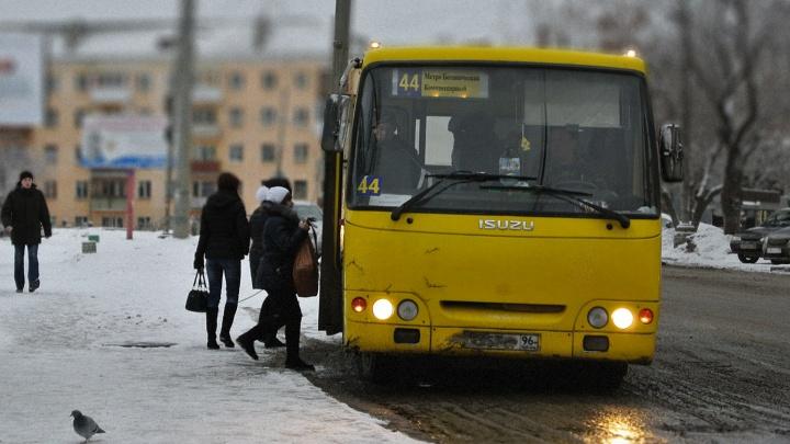 В Екатеринбурге появится новый маршрут-экспресс. По каким улицам поедут автобусы