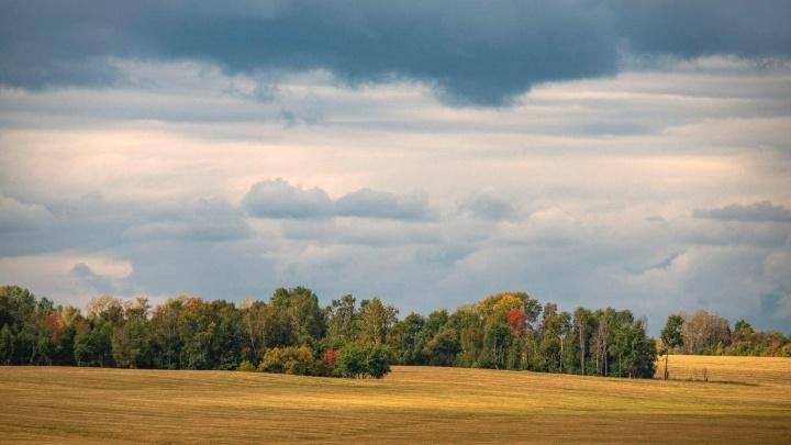 Незабываемый осенний спектакль: каким был сентябрь в Новосибирской области — 10 атмосферных фото