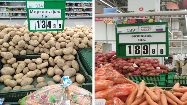 «Лошадь кормлю бананами, так дешевле»: уральцы — о заоблачных ценах на морковь и картошку