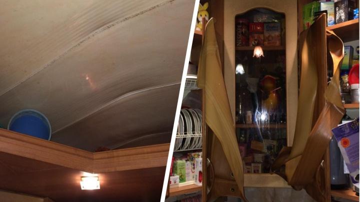 «Пес забился под диван и орал»: в Ярославле женщина обварилась кипятком из взорвавшейся трубы