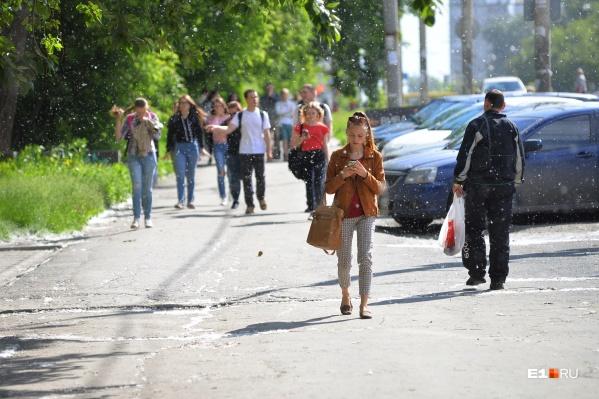 Жаркий воздух из Центральной Азии повлиял на погоду в Екатеринбурге