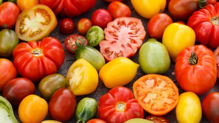 У вас много красных помидоров? Рассказываем простой способ сохранения их свежими до Нового года (никакой консервации!)