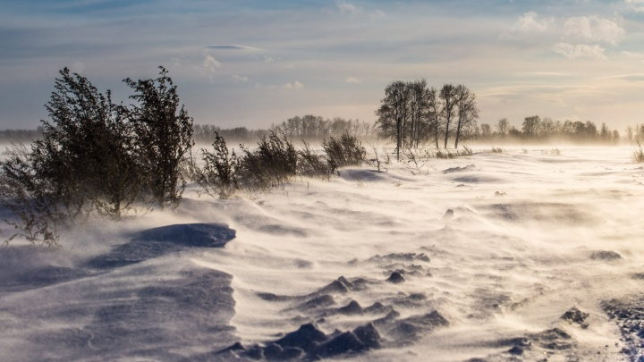 Термометр у жителя Новосибирской области показал -50градусов — синоптики назвали это ошибкой