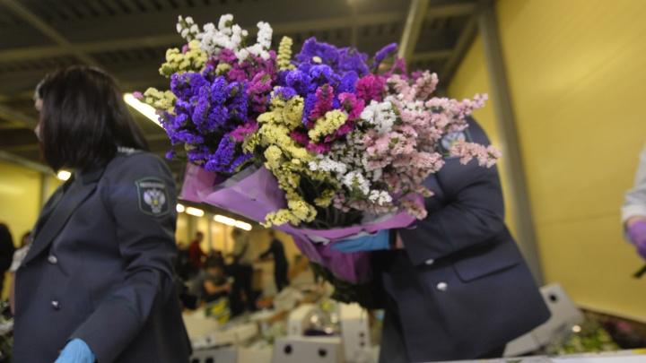 В Екатеринбург прилетел самолет, забитый под завязку цветами из Эфиопии и Колумбии