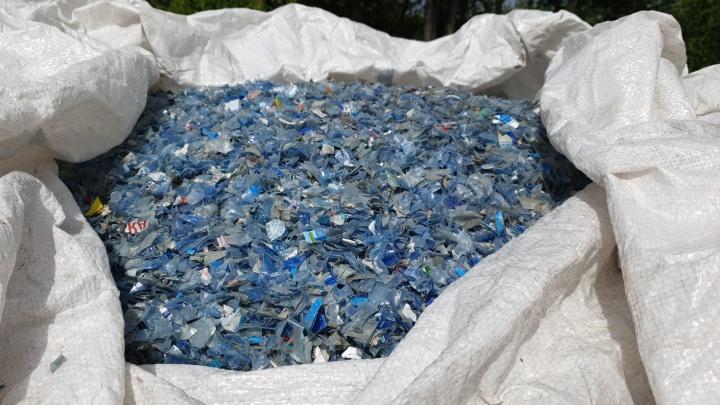 Для красноярцев организовали экскурсии на предприятия, перерабатывающие стекло и пластик