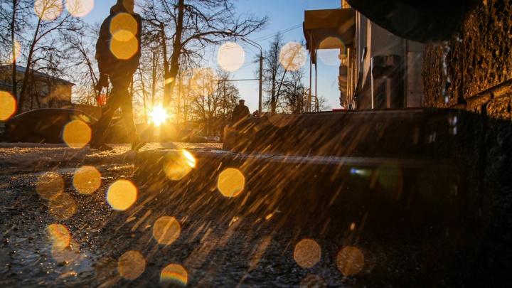 Мы попросили 12фотографов показать весну в России. Смотрите, что у них получилось