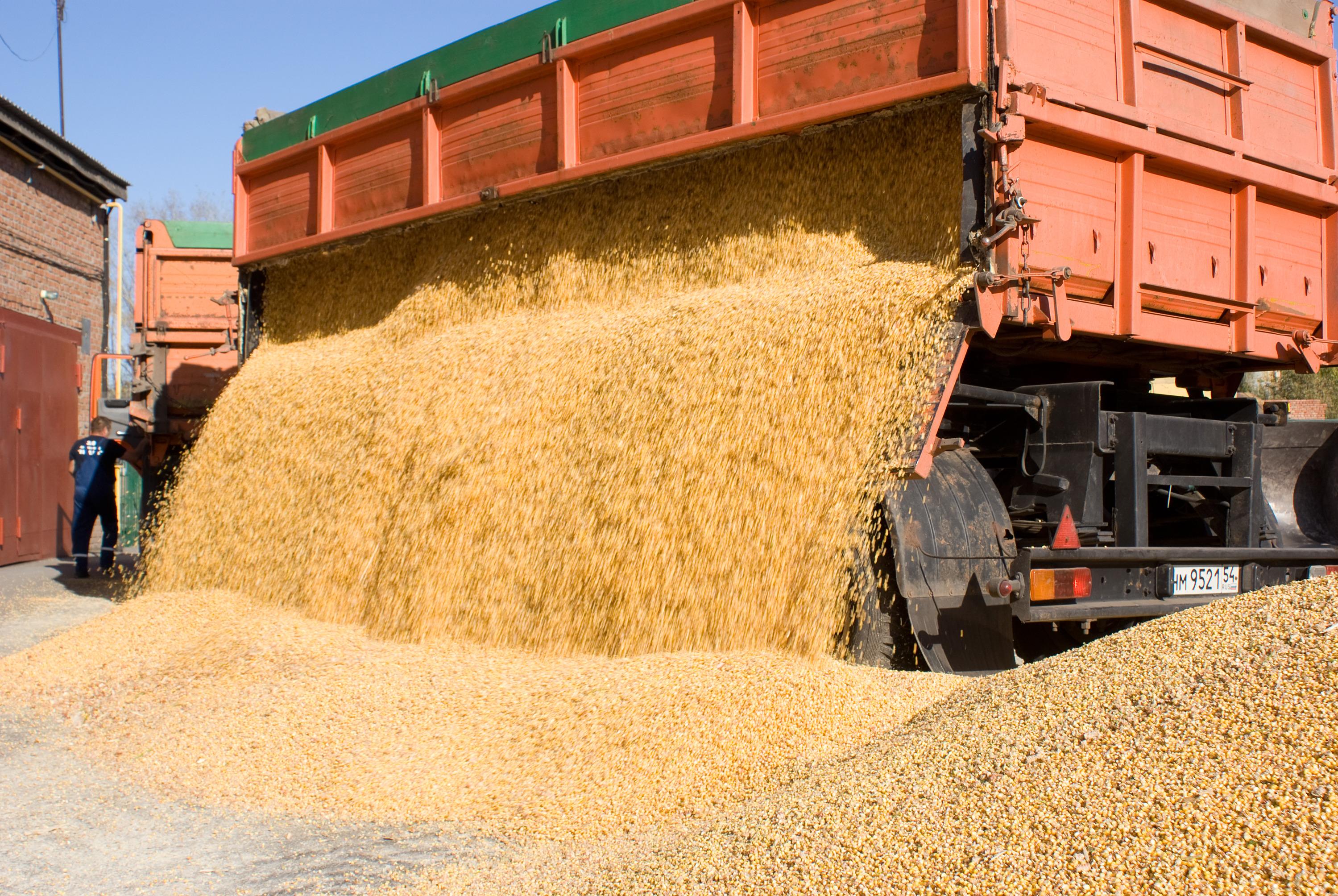 """В «Ирмени» — <nobr class=""""_"""">24 000 га</nobr> сельхозугодий, среднегодовая урожайность зерновых за последние <nobr class=""""_"""">10 лет —</nobr> <nobr class=""""_"""">45 ц/га</nobr>"""