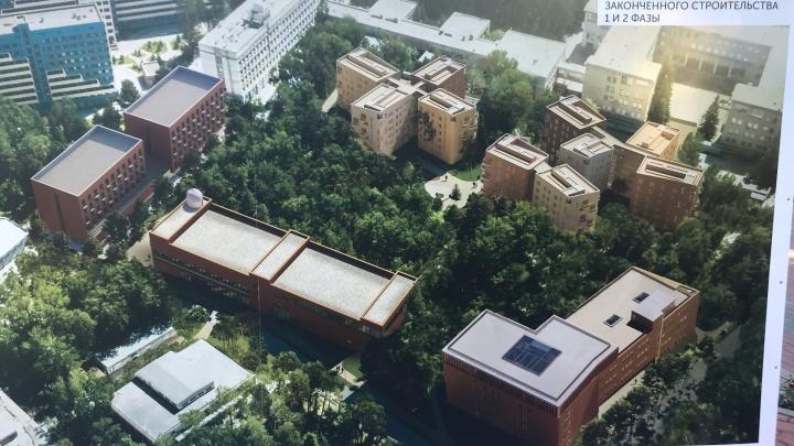 «Кампус мирового уровня»: смотрим, какими будут новый корпус, общежития и досуговый центр НГУ