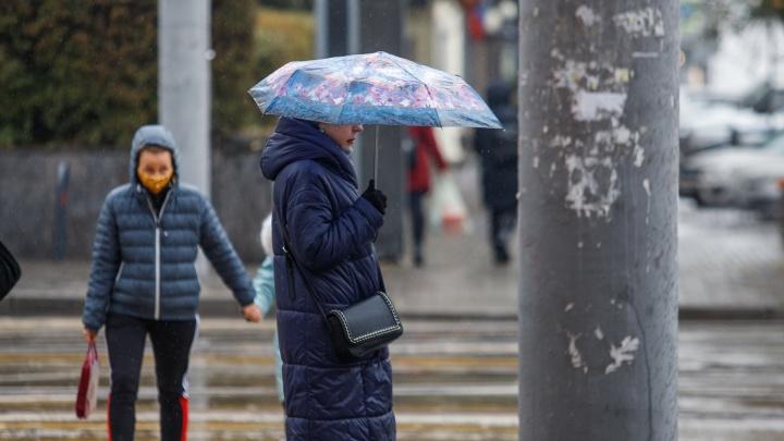 Захочется спать. Какой будет ростовская погода в первую неделю февраля?