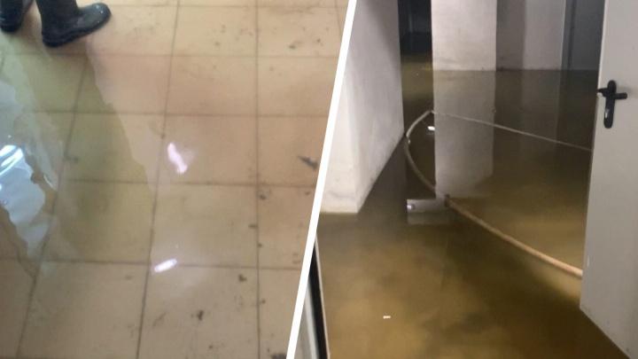 В тюменской новостройке из-за засора канализации затопило кладовки жильцов
