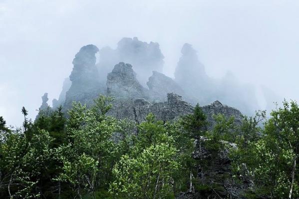 Туман над заповедной землей
