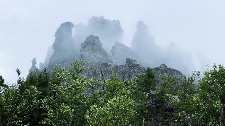 «Это места непростые, но великолепные»: путешественник Олег Чегодаев пешком преодолел весь Вишерский заповедник
