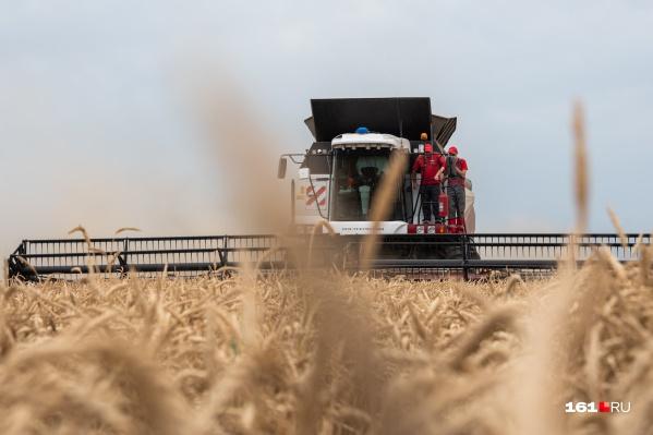 На долю 13 предприятий «Ростсельмаша» приходится 65% рынка производства сельхозтехники России и СНГ