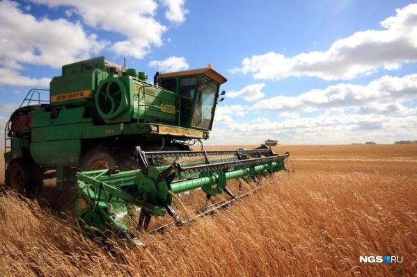 Мелкие и крупные сельхозпроизводители возмущены резким ростом кадастровой стоимости земли