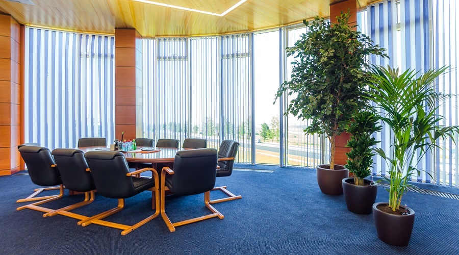 Бизнес на Царскосельских холмах: для работы, отдыха и комфортной среды0