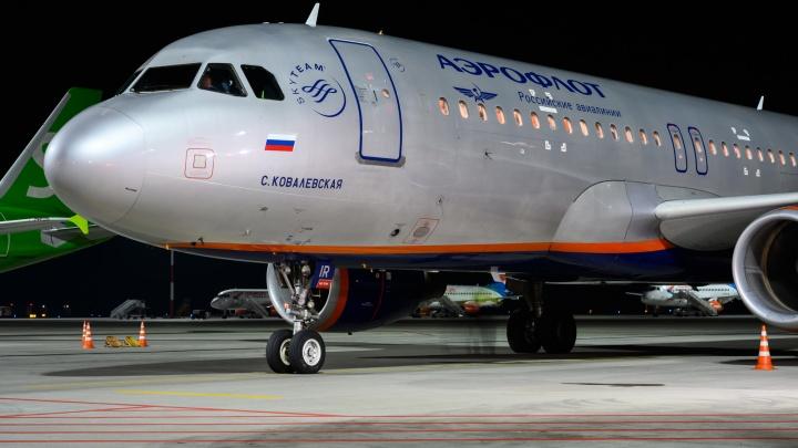 В Платове задержали четыре рейса, один самолет из-за снега сел в Волгограде