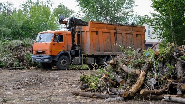 Вырубку деревьев под школу бокса Сергея Ковалева в центре Челябинска признали незаконной