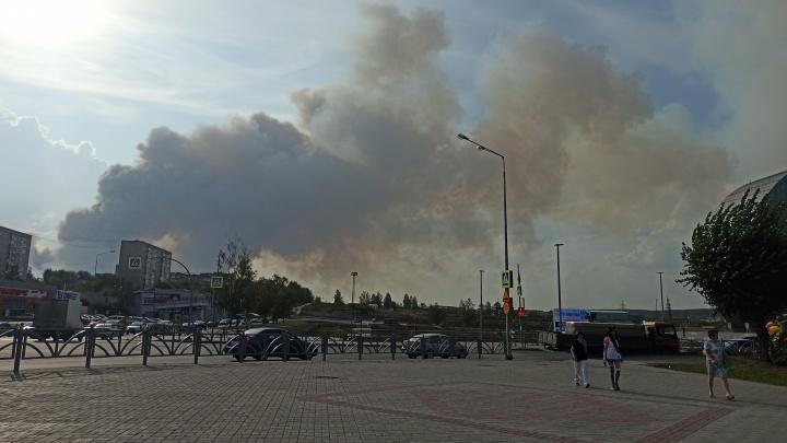 Под Первоуральском быстро разрастается новый природный пожар. Огонь угрожает садовым участкам