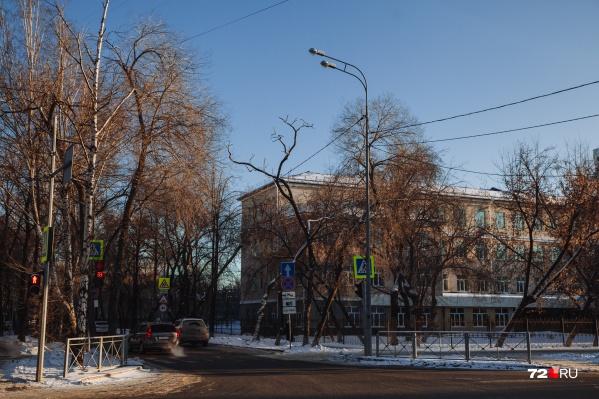 Пока на перекрестке все деревья остались нетронутыми