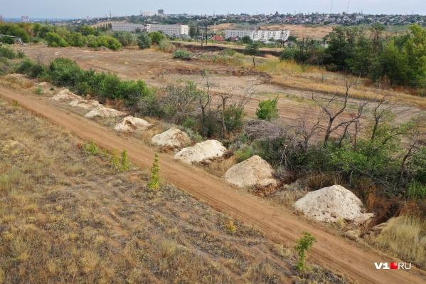 Восемь могил появились недалеко от муниципального приюта для животных