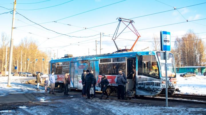 «Эксперимент, очевидно, неудачный»: почему Ярославлю не нужны новые правила проезда в электротранспорте