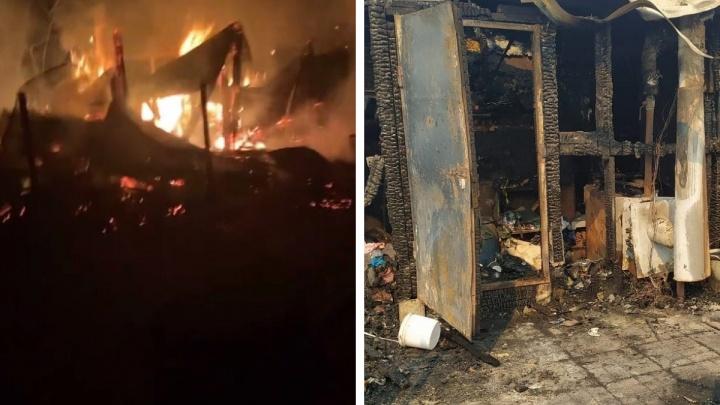 «Порядка 30 собак я спасла, а остальные задохнулись»: на Урале сожгли приют для животных