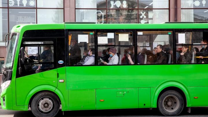 Тюменские чиновники задумались о бесплатном проезде для школьников