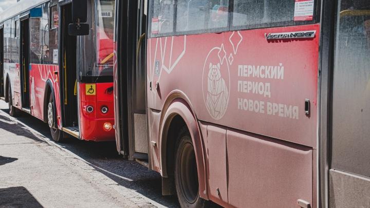 Мэрия Перми вновь объявит торги по 20 автобусным маршрутам
