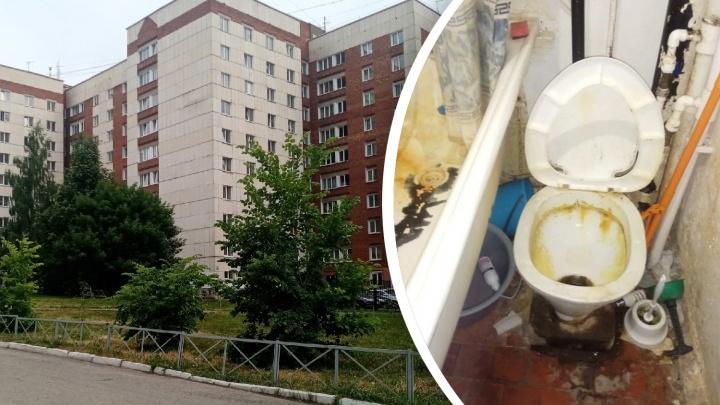 Желтые унитазы и тараканы повсюду: студенты УГАТУ показали «лучшее» общежитие, где поднимают цены
