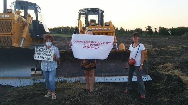 «Ее надо было крутить у дубов»: в Волгограде суд назначил 150 тысяч рублей штрафа 74-летней защитнице поймы