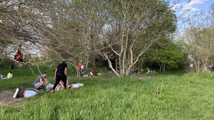 Жителей Кубани в выходные ждет жара до 33 °С