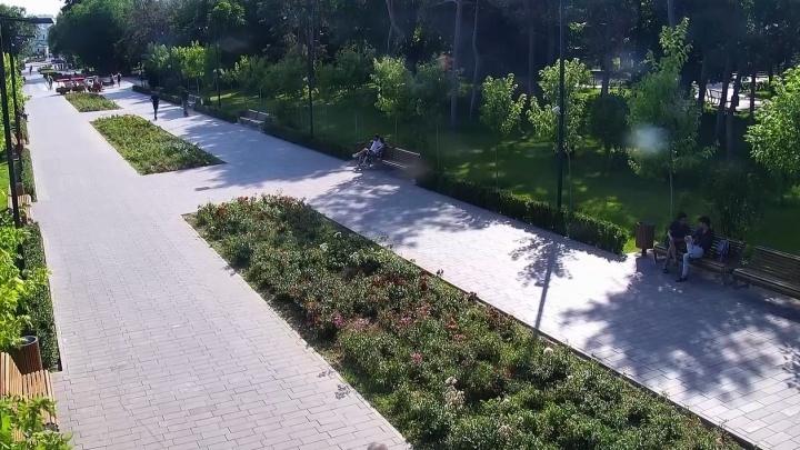 Фактически это столкновение пешеходов: в полиции Волгограда прокомментировали инцидент с участием ребенка и электросамоката
