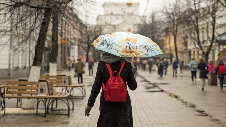 Центральную Россию зальет: в Ярославле прогнозируют выпадение трети месячной нормы осадков