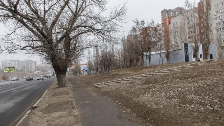 «Мы дойдем до Путина»: в Волгограде жители требуют не строить под окнами огромную автомойку