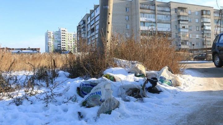 Вадим Шумков попросил жителей Курганской области подумать перед тем, как мусорить