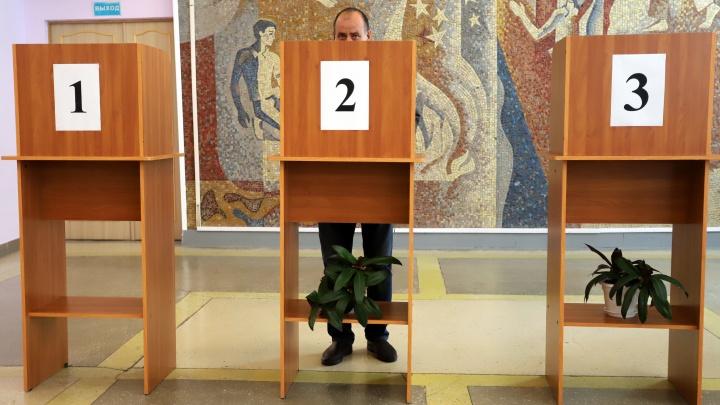 В Курганской области проголосовали более трети избирателей