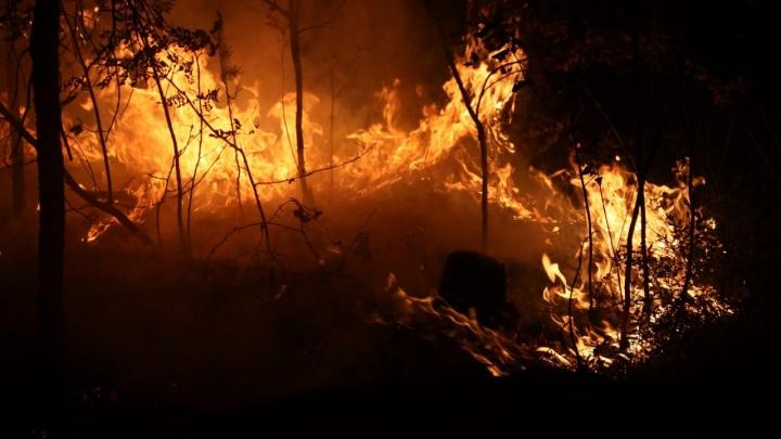 Пожар у озера Глухого распространился на 500 гектаров, его не удается локализовать. Следим за огнем в режиме онлайн
