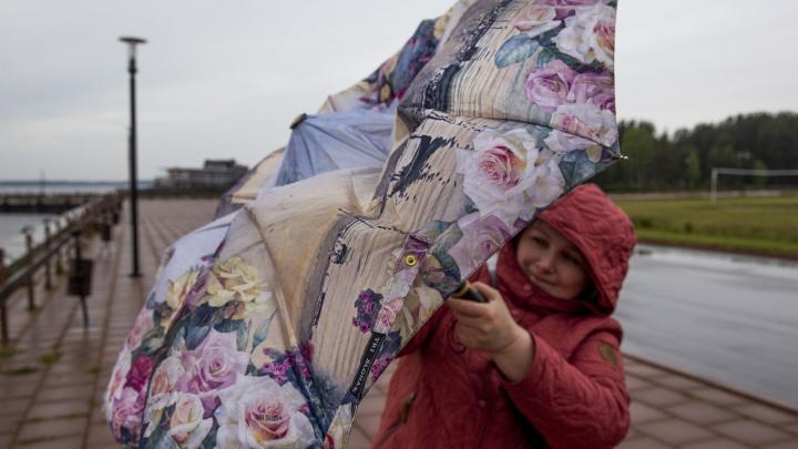 На Россию обрушился циклон «Роланд»: метеорологи рассказали, когда Ярославль накроет волна непогоды