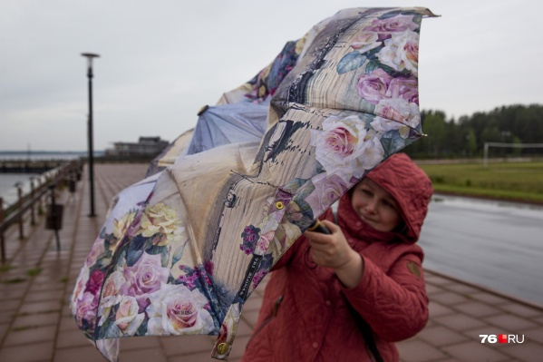 В Ярославле резко похолодало, а в ближайшие дни будет еще и дождливо