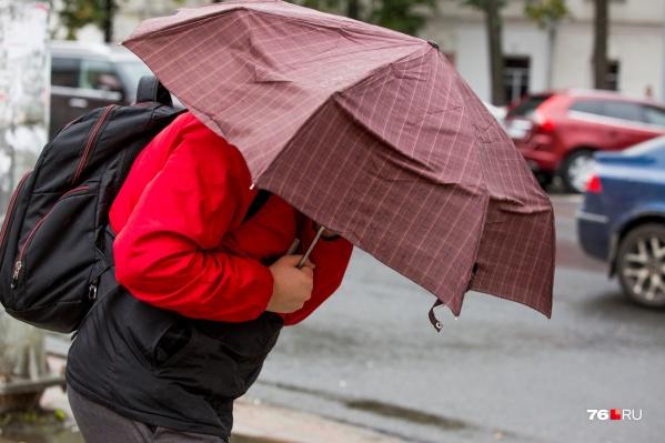 Синоптики прогнозируют, что 8 мая будет ветрено