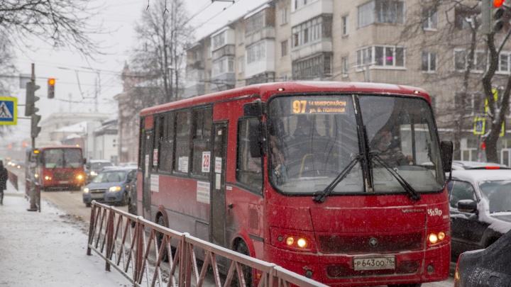 «Выживать же надо»: в Ярославле маршрутки начали возить льготников по 14 рублей