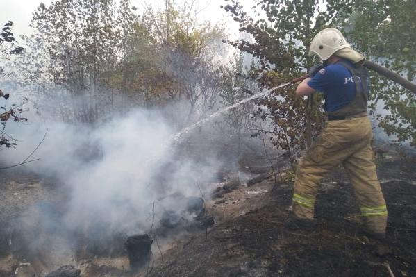 Работу пожарных осложняет сильный ветер