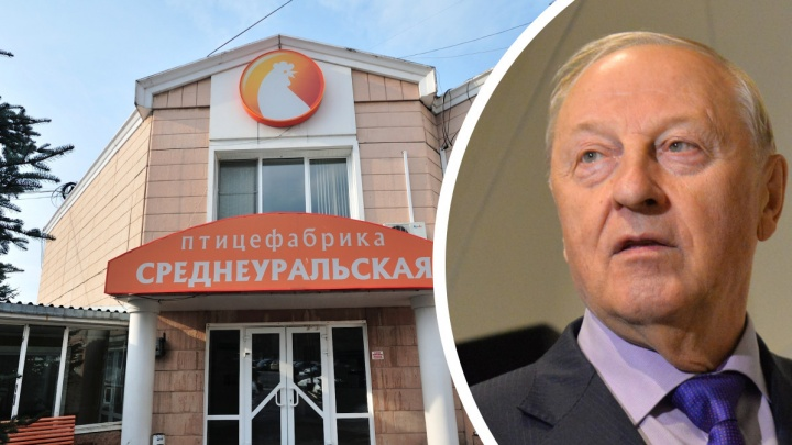 «Косилов специально взял ее, чтобы угробить»: Россель раскритиковал власти за закрытие Среднеуральской птицефабрики