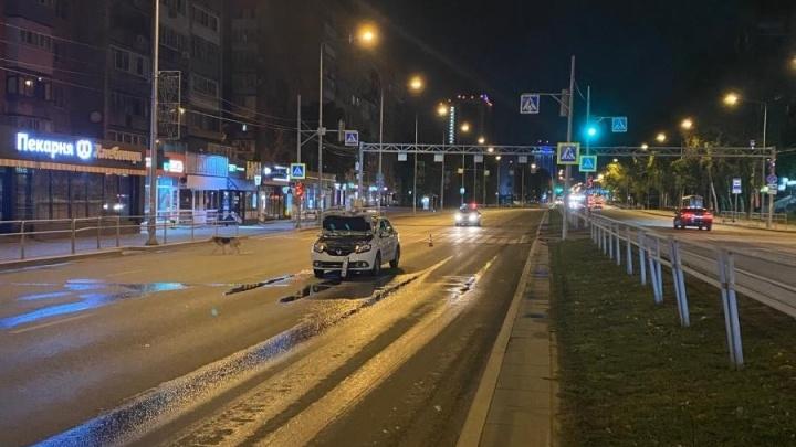 В Самаре на Ново-Садовой сбили двух пешеходов