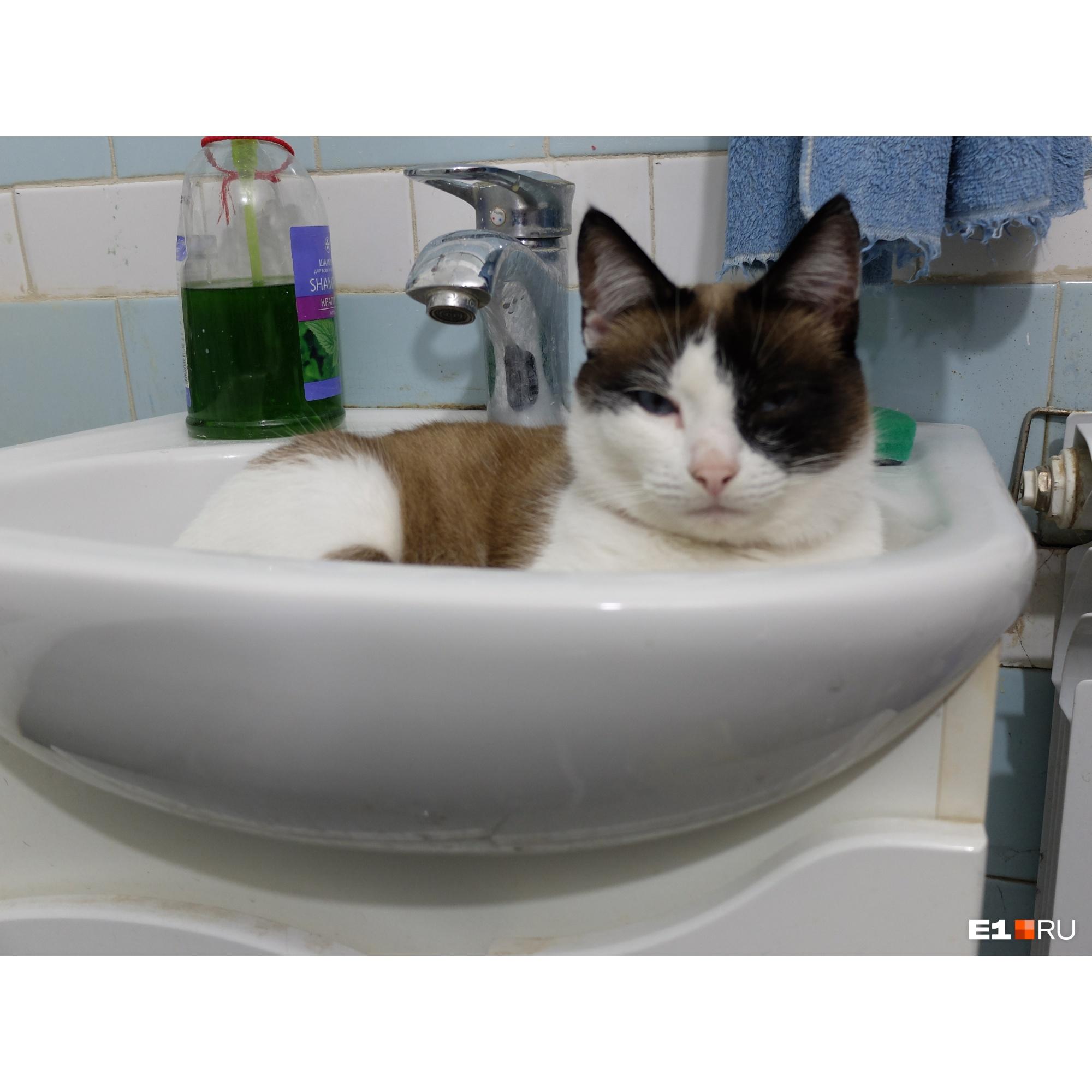 Жители недовольны качеством воды
